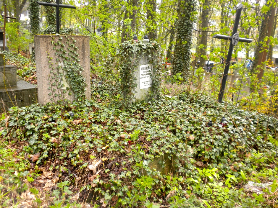 Graves overgrown with ivy