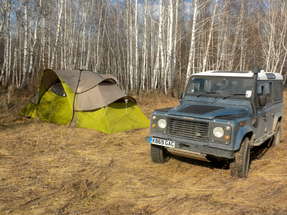 Campsite amongst the birch trees, off the highway