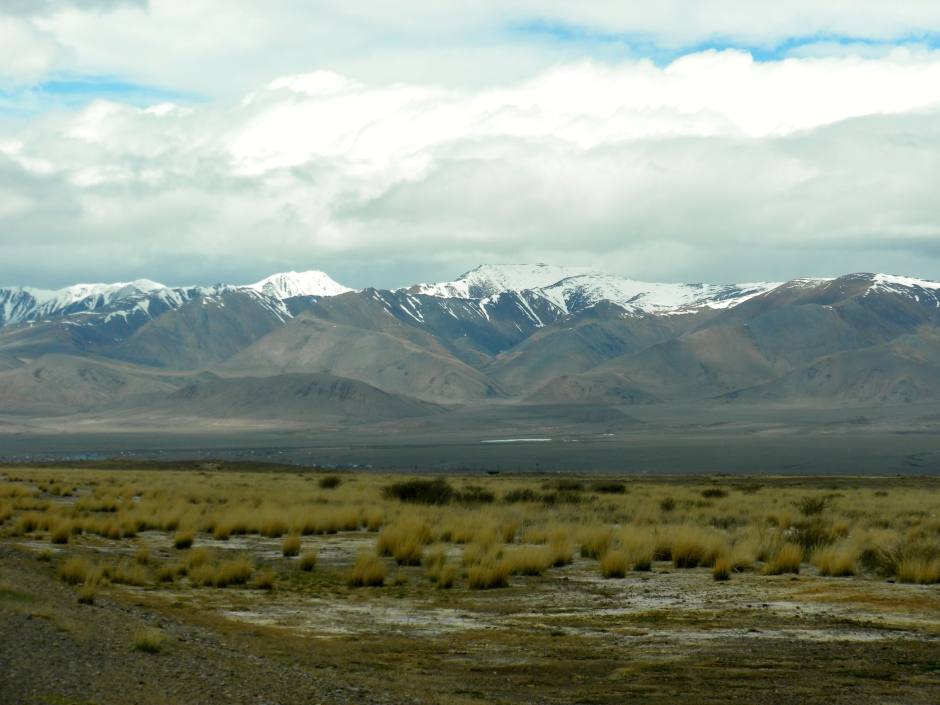 Driving towards the Russian Altai mountain range