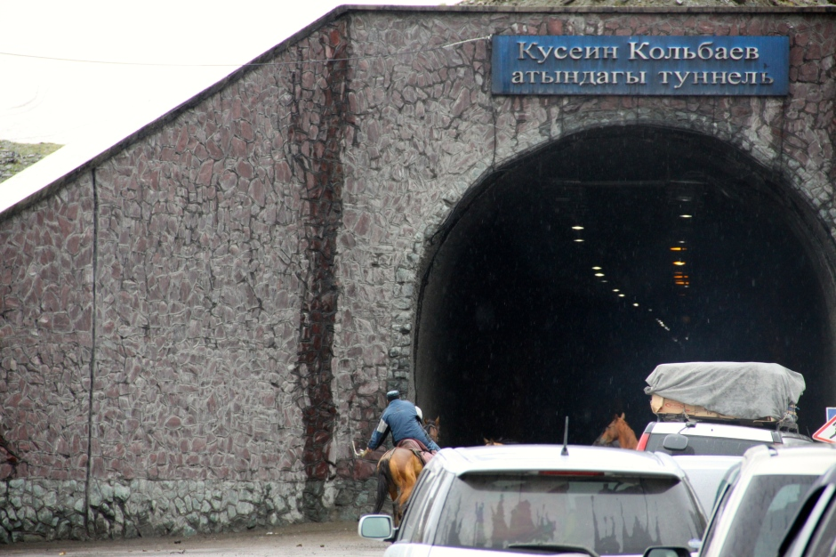 Horses block access to the tunnel