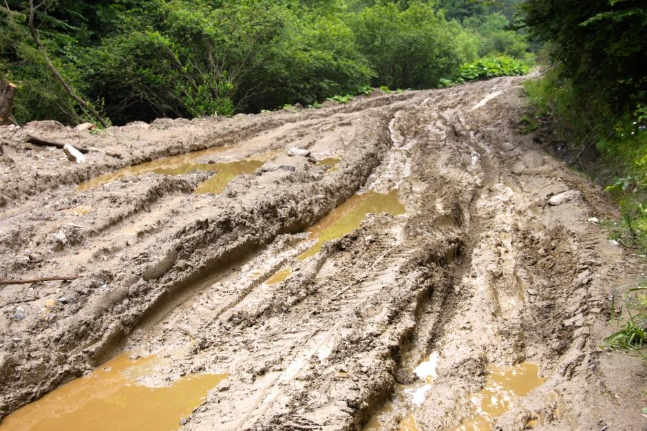 Sloppy mud, thanks to yesterday's thunderstorm and heavy rain