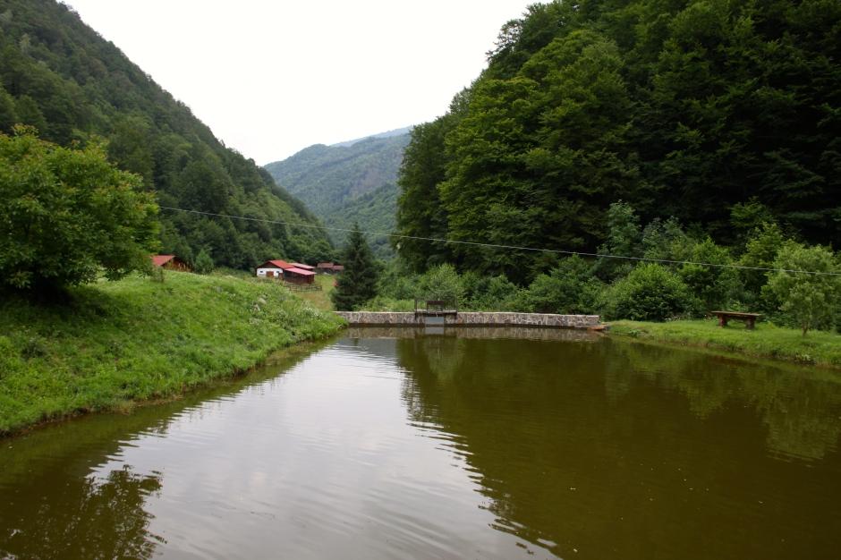 Pond at Cheile Cibinului resort
