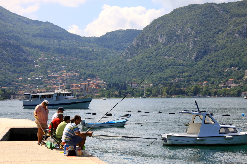 Fishing off the dock is also popular. The town of Kotor is visible in he distance (centre-left)