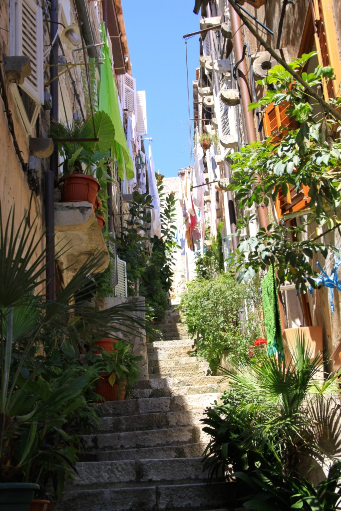 Residents on this particular lane have decorated it with plants