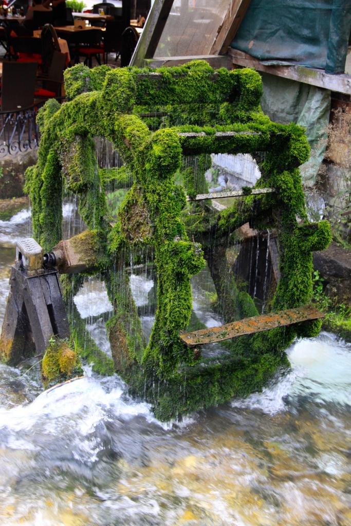 Mossy waterwheel