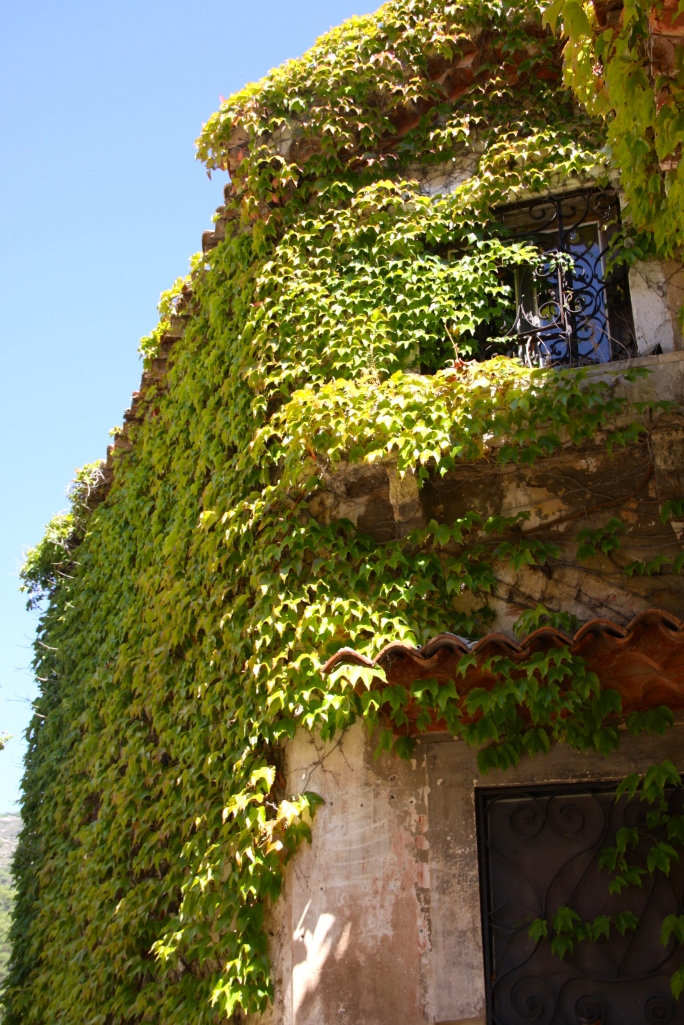 Ivy covered house in Eze Village