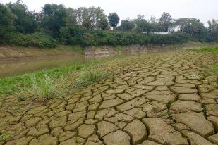 Dried riverbank