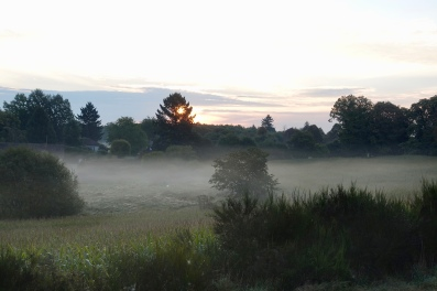 Sunrise and morning mist