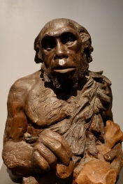 Replica sculpture of Neandertal man
