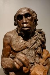 Replica sculpture of Neandertal man