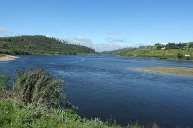 Tejo River