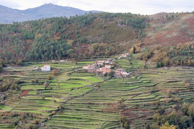 Village of Paco