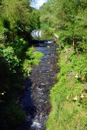 Small river near Carvoeira
